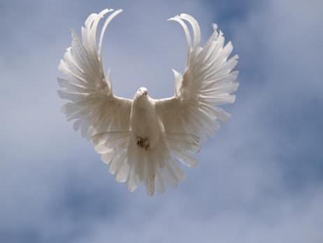 Как просить ангела хранителя об исполнении желаний