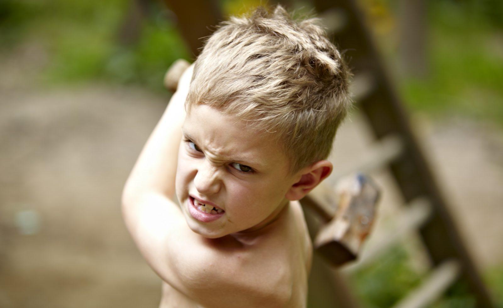 Детская жестокость