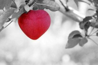 Сердце-яблоко
