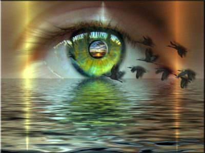 увидеть мир другими глазами