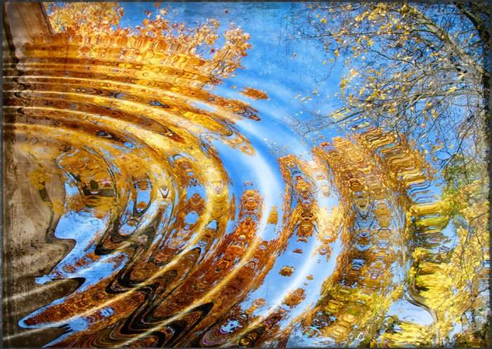 отражение в природе