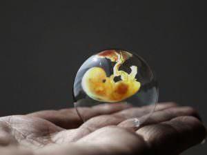чудо зачатия